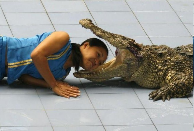 crocodilegirl.jpg