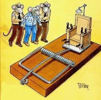 mouse-trap-execution.jpg