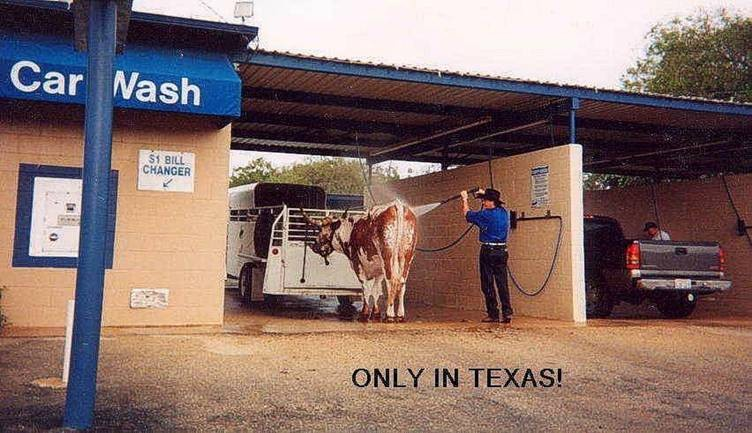 texascarwash.jpg