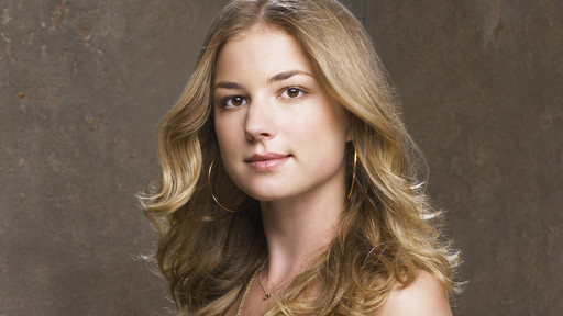 Emily Vancamp - from tv show - Brothers and Sisters